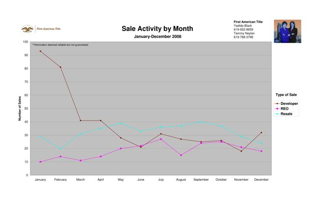 2008 Sale Activity by Month