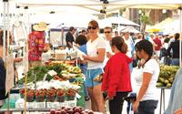 Farmers Market Mercato