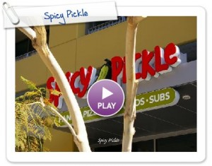 """Spicy Pickle"" Open in The East Village/Ballpark District in Downtown San Diego!"