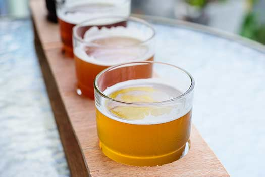 Learn About the Beer Fest in San Diego