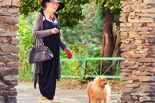 Dog Walking Places in San Diego