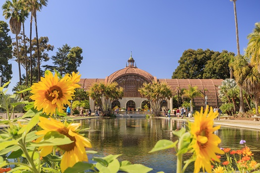 Balboa Park vs. Central Park: How Do They Compare?