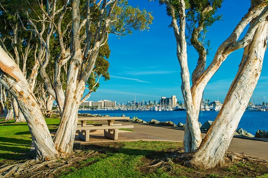 Spots for Relaxing in San Diego's Downtown Districts in San Diego, CA